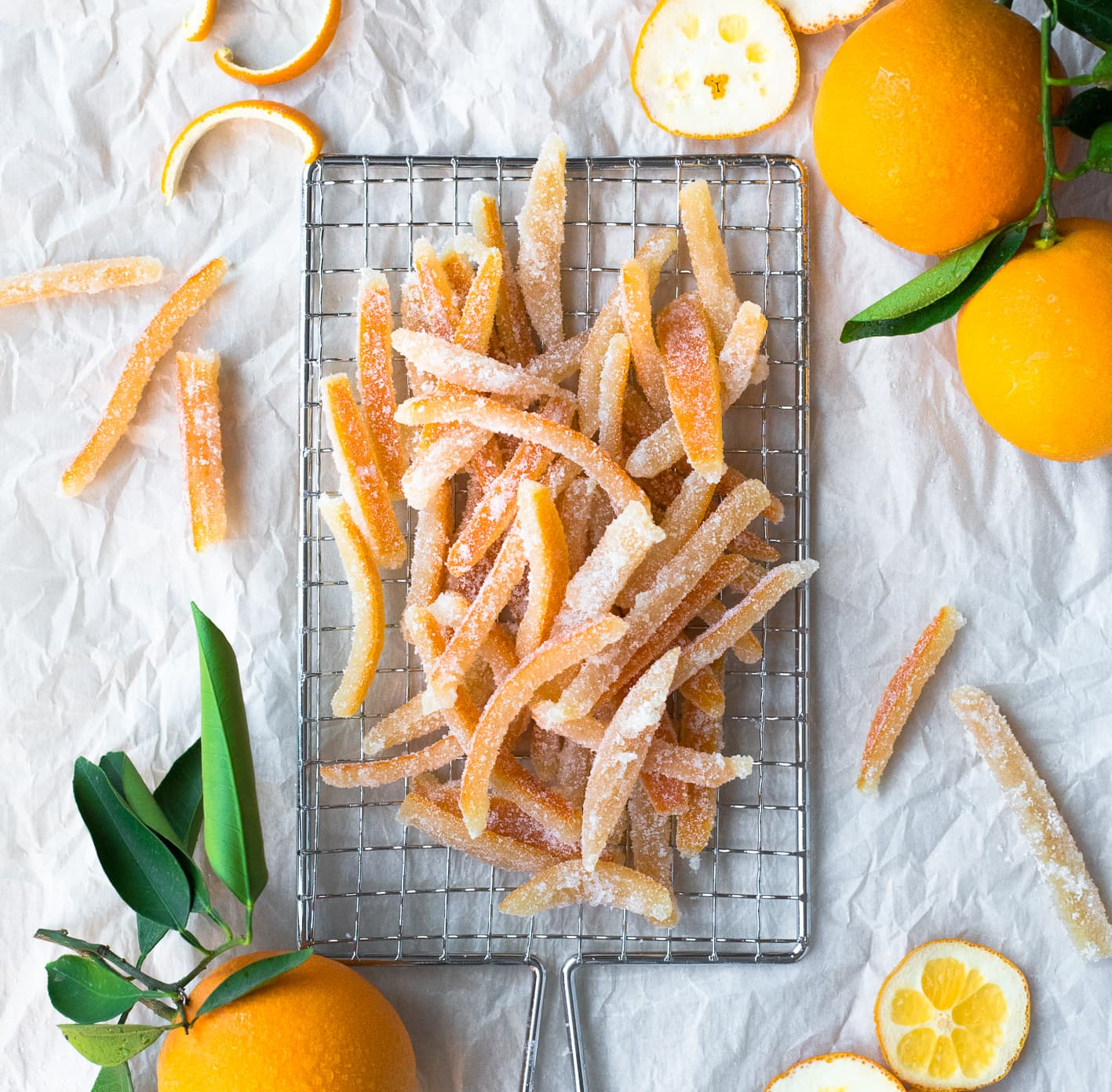 White//Orange Crisp Dual Juicer Citrus