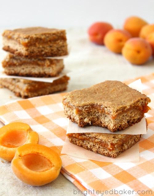 Apricot Bars 2