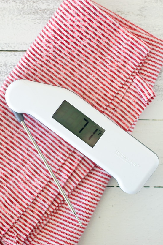 Thermapen Review and 10 Reasons You Need a Kitchen Thermometer | Confessions of a Bright-Eyed Baker