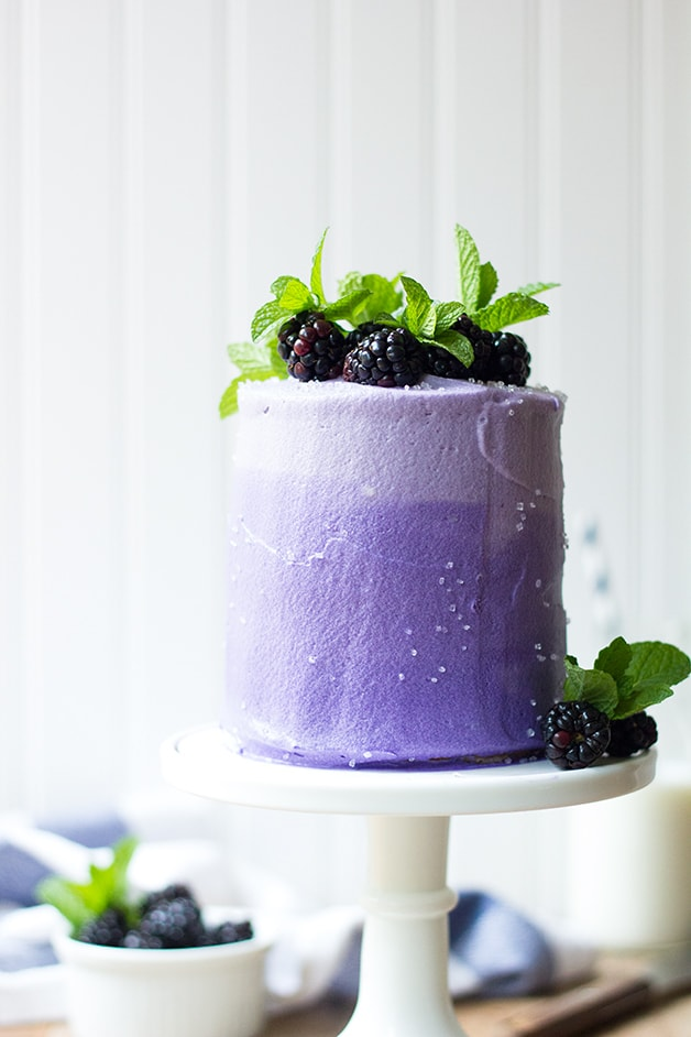 Mini Marble Layer Cake (and Cupcakes!) with Blackberry Cream Cheese Frosting | www.brighteyedbaker.com
