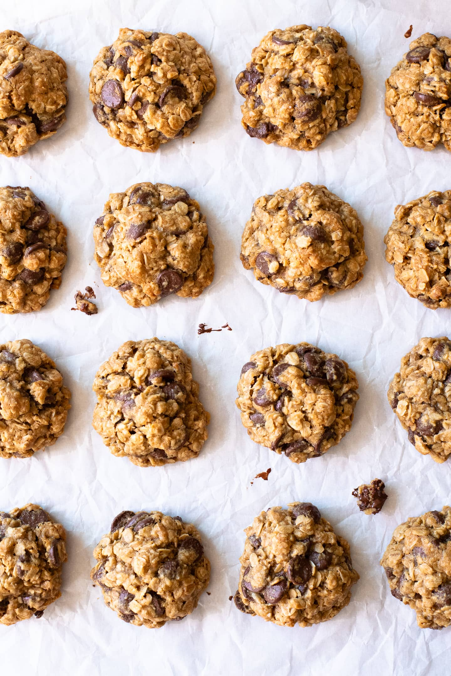 Overhead view of gluten-free Oatmeal Chocolate Chip Cookies, arranged in a grid on a crinkled sheet of white parchment paper.
